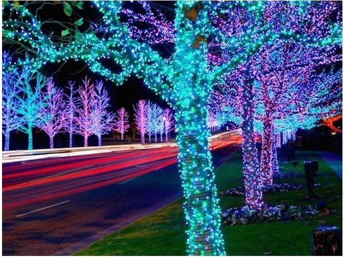 Đèn led dây 3014 nhiều màu giúp không gian ngoài trời thêm rực rỡ
